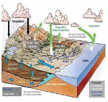 Notions de base sur la ressource en eau dans -> NOTIONS D'ECOLOGIE image001