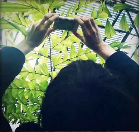 Spinoza, la plante et l'écologie dans Arne Naess spe1